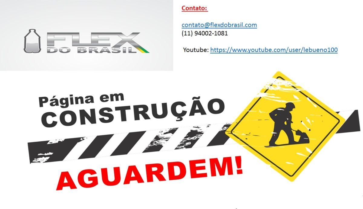 FLEX DO BRASIL